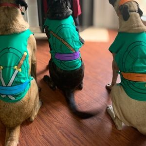 XL Ninja Turtle Dog Costumes
